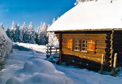 Gemütliches Ferienhaus : Region Traunsee für 3 Personen