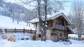 Holiday home 1406864 for 2 adults + 2 children in Gössenberg