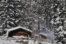 Ferienhaus 1406957 für 4 Personen in Sankt Johann in Ahrntal