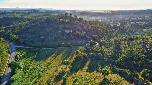 Gemütliches Ferienhaus : Region Costa do Alentejo für 7 Personen