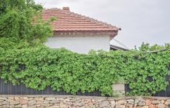 Holiday home 1412952 for 7 persons in Shabla