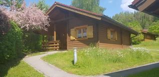 Holiday home 1439105 for 4 adults + 1 child in Stamsried