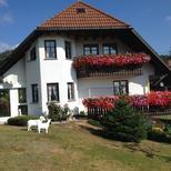 Rekreační byt 1440046 pro 4 osoby v Dachsberg-Südschwarzwald Vogelbach