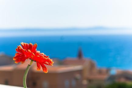 Für 12 Personen: Hübsches Apartment / Ferienwohnung in der Region Makarska