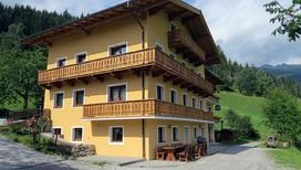 Holiday home 1446208 for 20 persons in Bad Hofgastein