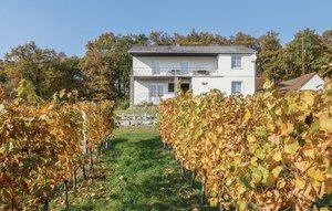Gemütliches Ferienhaus : Region Burgenland für 10 Personen