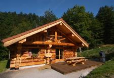 Holiday home 1449913 for 12 persons in La Bresse