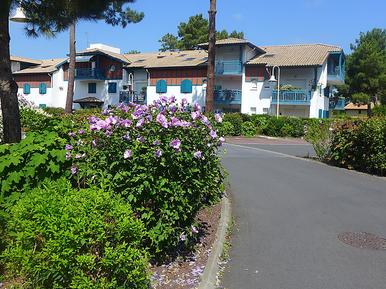 Für 3 Personen: Hübsches Apartment / Ferienwohnung in der Region Capbreton