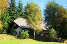 Vakantiehuis 1465476 voor 6 personen in Todtmoos