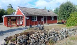 Vakantiehuis 1480436 voor 9 personen in Ryd