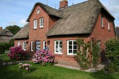 Maison de vacances 1482125 pour 10 personnes , Borgsum