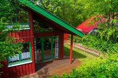 Maison de vacances 1482151 pour 5 personnes , Extertal-Rott