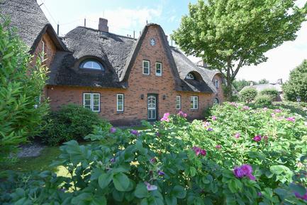 Gemütliches Ferienhaus : Region Föhr für 7 Personen