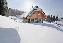 Holiday home 1510010 for 6 persons in Lachtal