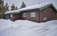 Dom wakacyjny 1516058 dla 4 osoby w Golsfjellet