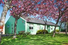 Holiday apartment 1517146 for 6 persons in Galway