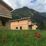 Holiday home 1520216 for 8 persons in Sankt Gallenkirch