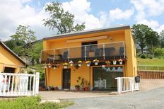 Vakantiehuis 1557858 voor 4 personen in Klingenthal