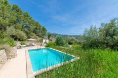 Holiday home 1569944 for 6 persons in Andratx