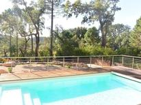 Holiday home 1593272 for 12 persons in Porto-Vecchio