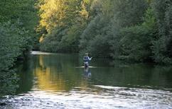 Ferielejlighed 1611907 til 8 personer i Loreglia
