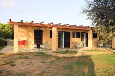 Holiday home 1611935 for 6 persons in Capoliveri