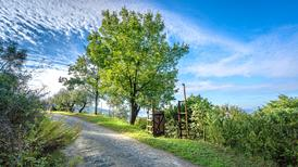 Holiday home 1626119 for 2 adults + 1 child in Pistoia
