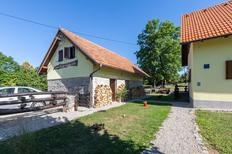 Holiday home 1630874 for 6 persons in Lovinac