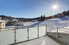 Ferienwohnung 1632399 für 4 Erwachsene + 2 Kinder in Feldberg im Schwarzwald
