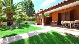 Vakantiehuis 1633245 voor 5 personen in Costa Rei