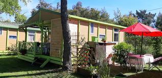 Vakantiehuis 1634887 voor 5 personen in Sorbo-Ocagnano