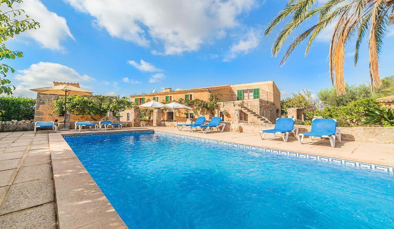 Große Pool Finca Olivera bei Cas Concos Mallorca