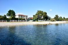 Holiday apartment 1649254 for 4 persons in Sveti Filip i Jakov
