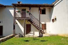 Vakantiehuis 1650038 voor 4 personen in Buzet