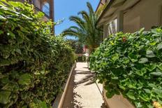 Holiday apartment 1651465 for 4 persons in Pjescana Uvala