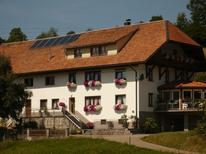 Studio 167988 für 4 Personen in Dachsberg (Südschwarzwald)