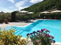 Holiday home 1671397 for 3 persons in Gallicano