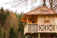 Maison de vacances 1673262 pour 4 personnes , Comeglians