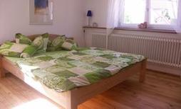 Studio 168094 pour 4 personnes , Münchweier