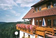 Etværelseslejlighed 168810 til 6 personer i Schonach im Schwarzwald