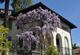 Vakantiehuis 1698504 voor 5 personen in Ronco sopra Ascona
