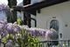 Studio 1698505 voor 2 personen in Ronco sopra Ascona