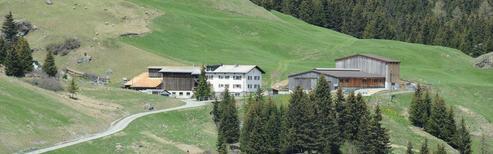 Ferienwohnung 1699042 für 4 Personen in Bivio