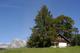 Vakantiehuis 1699122 voor 8 personen in Wildhaus