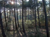 Vakantiehuis 17735 voor 6 personen in Lacanau