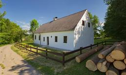 Holiday home 1700306 for 8 persons in Steinakirchen am Forst