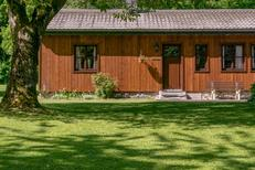 Holiday home 1700910 for 5 persons in Vielsalm