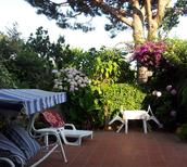 Holiday apartment 1711959 for 4 persons in Barano d'Ischia