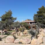 Holiday apartment 1712801 for 4 persons in Orosei-Sos Alinos