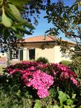 Holiday home 1714186 for 6 persons in Vilarelho